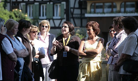 Guided city tour through the World Heritage Bamberg